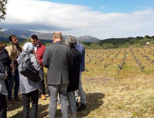 "Girona & PO: Missión Inversa ""Pyrenees Mediterranean Wine Trip"""
