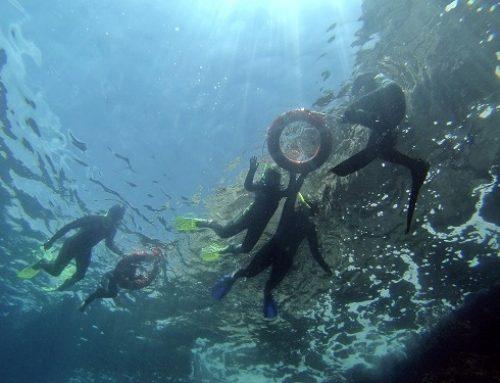 Eco Snorkel dans les îles Medes